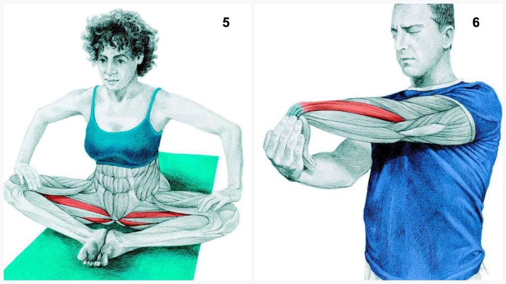 Yoga5_6-1024x576